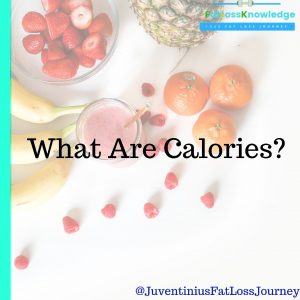 What Are Calories?